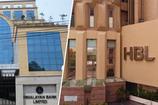 हिमालयन बैंकबाट ६ अर्ब लिएर बाहिरिने भयो पाकिस्तानको हबिब बैंक