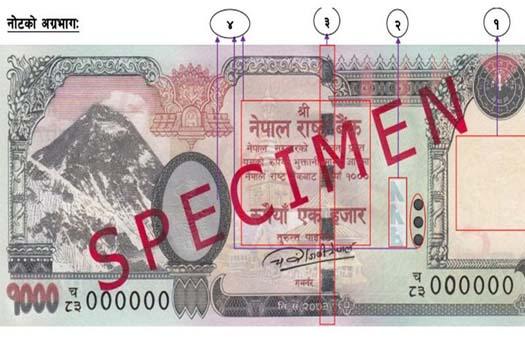 अब हजारको नोटमा नेपालकै जुम्ल्याहा हात्ती, २६ अर्बको नयाँ नोट बजारमा